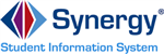 Synergy Icon